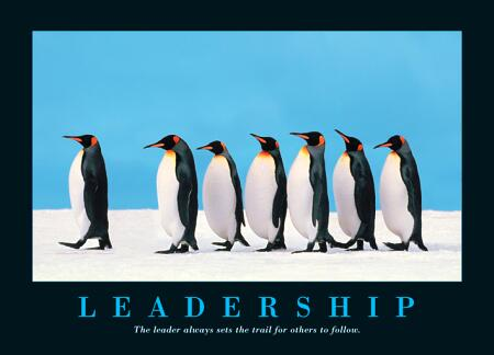 leadership-pinguin